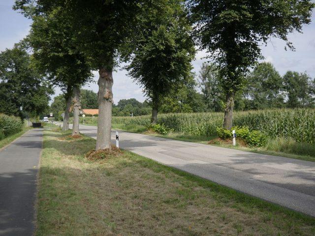 Dritter schwerer Unfall auf der Riesenbecker Strasse (K29) bei Saerbeck innerhalb von 5 Monaten