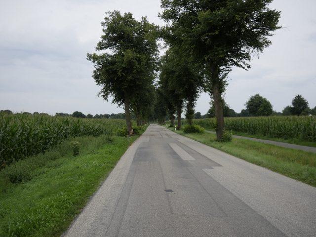 Schwerer Unfall auf der Riesenbecker Strasse (K29)